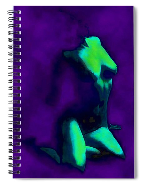 Figure 1 Spiral Notebook