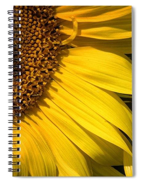 Find The Spider In The Sunflower Spiral Notebook by Belinda Greb
