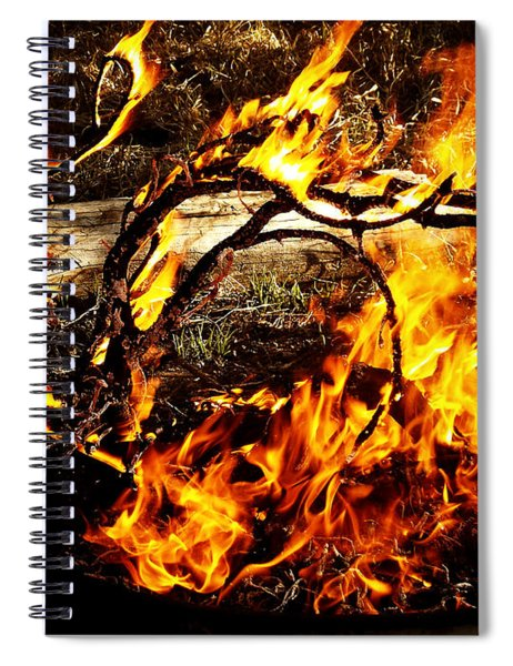 Fire Fairies Spiral Notebook