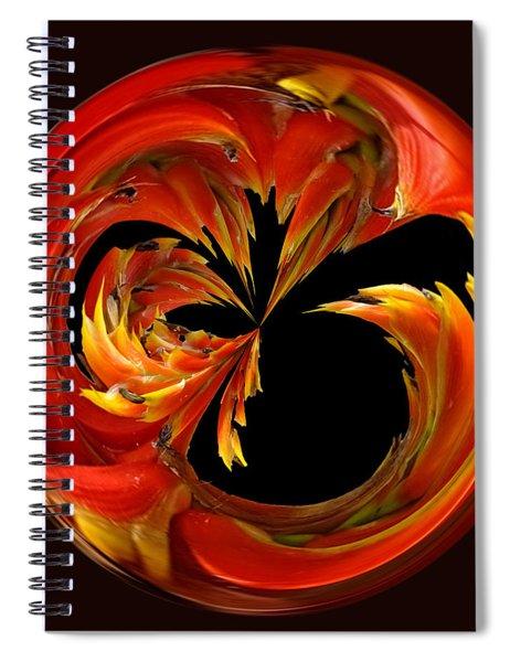 Fireball Orb Spiral Notebook