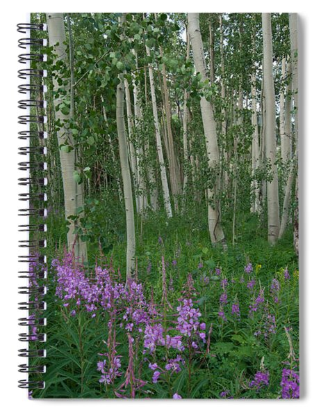 Fireweed And Aspen Spiral Notebook