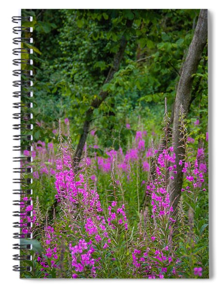 Fireweed In The Irish Countryside Spiral Notebook