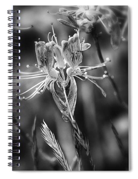 Fireweed Spiral Notebook