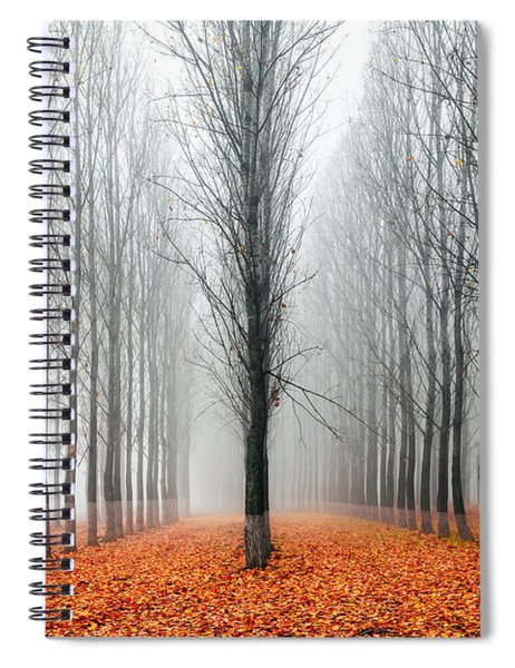 First In The Line Spiral Notebook