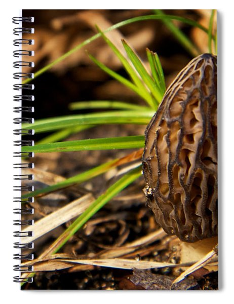First Morel Mushroom Of Spring Spiral Notebook