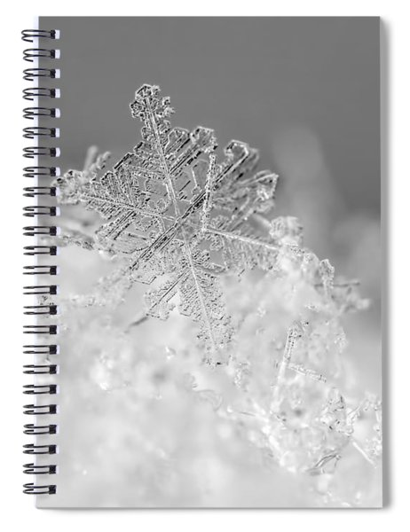 First Snowflake Spiral Notebook