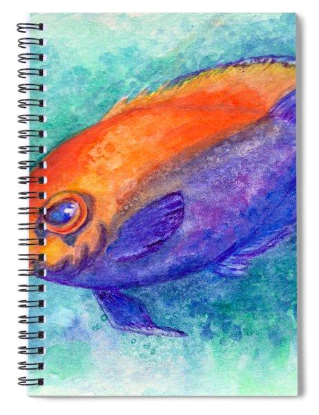 Flameback Angelfish Spiral Notebook