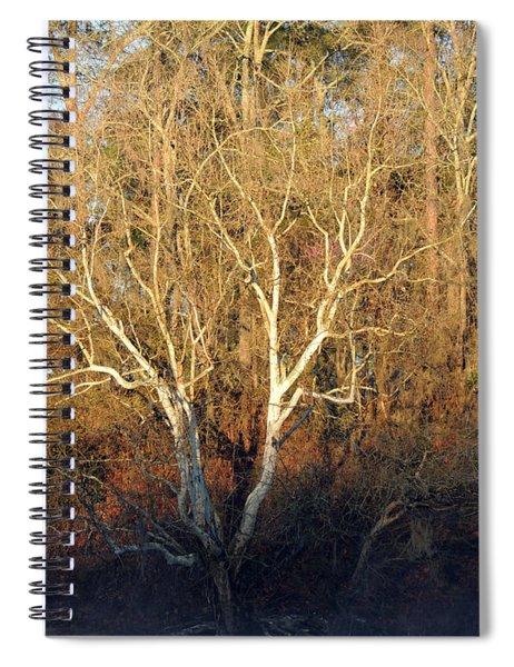 Flint River 16 Spiral Notebook