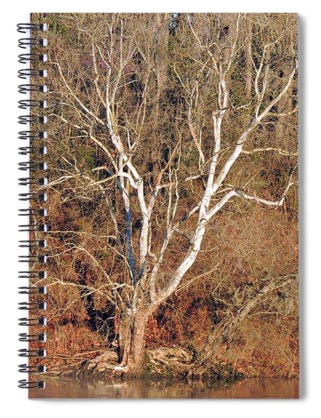 Flint River 25 Spiral Notebook