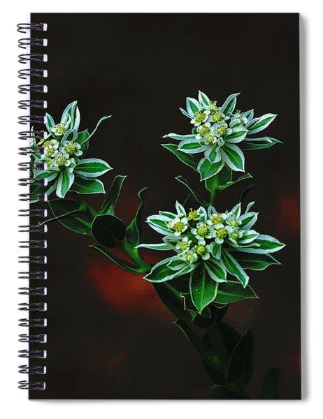Floating Petals Spiral Notebook