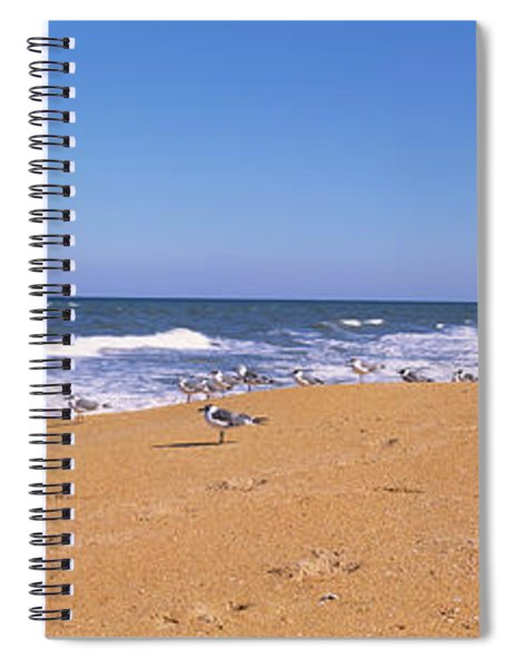 Flock Of Birds On The Beach, Flagler Spiral Notebook