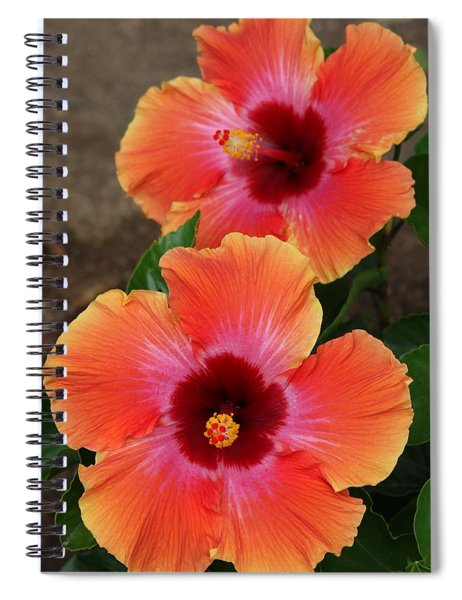 Floral Beauty 2  Spiral Notebook