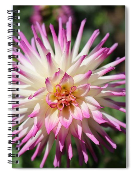 Floral Beauty 3  Spiral Notebook