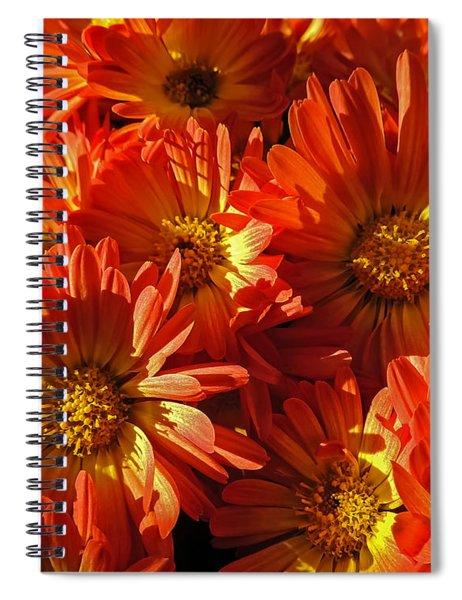 Floral Frenzy Spiral Notebook