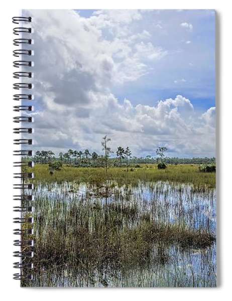 Florida Everglades 0173 Spiral Notebook