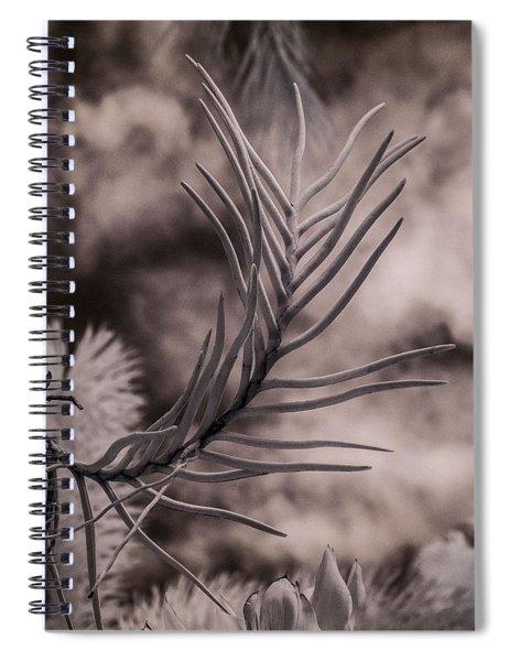 Florida Flora 1 Spiral Notebook