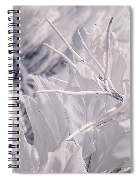 Florida Whites Spiral Notebook