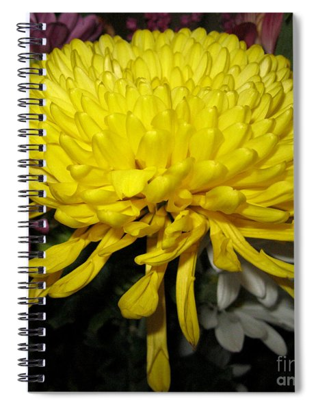 Yellow Queen. Beautiful Flowers Collection For Home Spiral Notebook