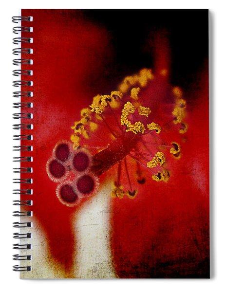 Flower Abstract Spiral Notebook