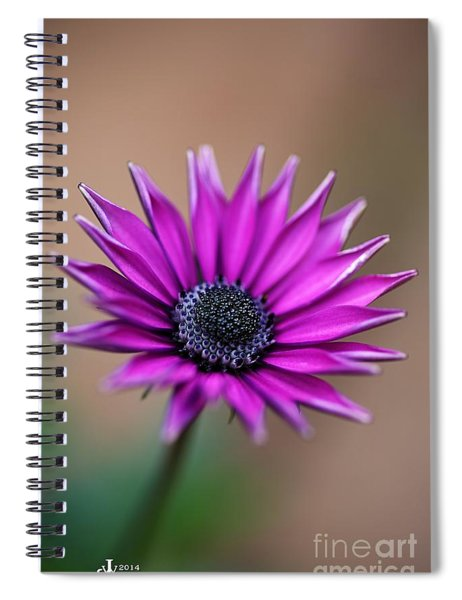 Flower-daisy-purple Spiral Notebook