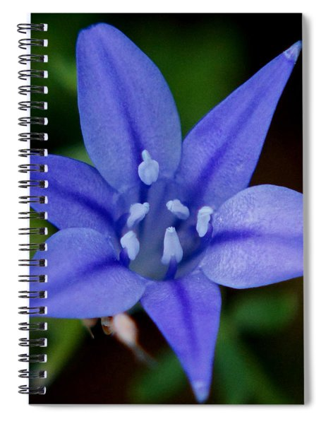 Flower From Paradise Lost Spiral Notebook