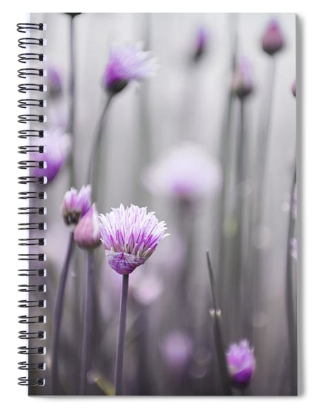 Flowering Chives IIi Spiral Notebook