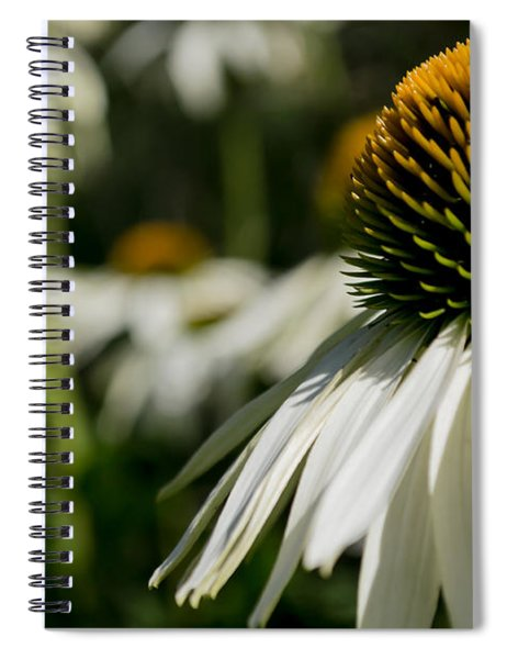 Flowers - Echinacea White Swan Spiral Notebook