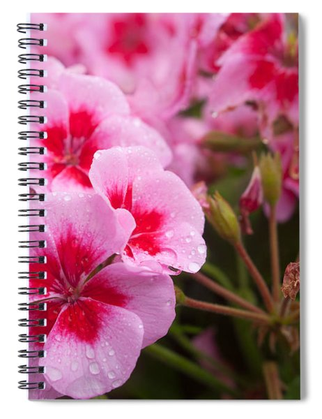 Flowers On A Rainy Sunday Afternoon Spiral Notebook