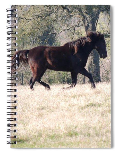 Flowing Beauty Spiral Notebook
