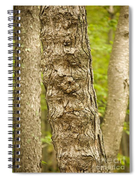 Fluted Tree Spiral Notebook
