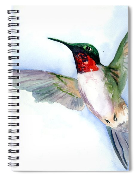 Fly Free Spiral Notebook