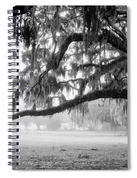 Foggy Morning On Coosaw Plantation Spiral Notebook