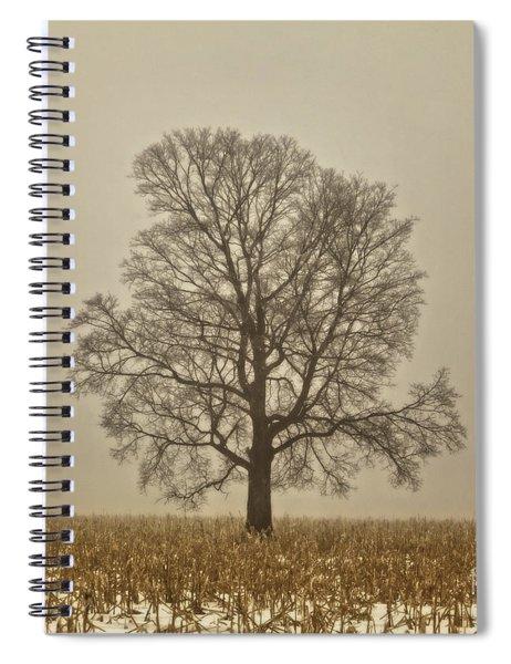 Foggy Tree Spiral Notebook