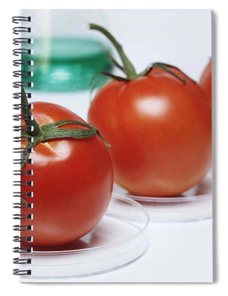 Food Research Spiral Notebook