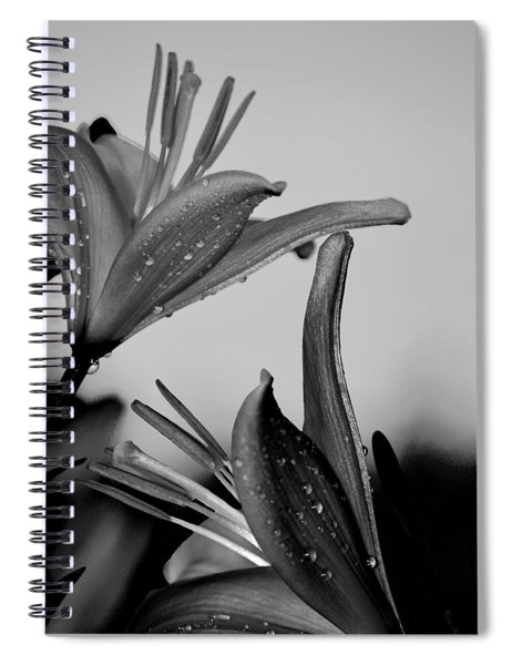 For The Love Of Lillies Bw Spiral Notebook