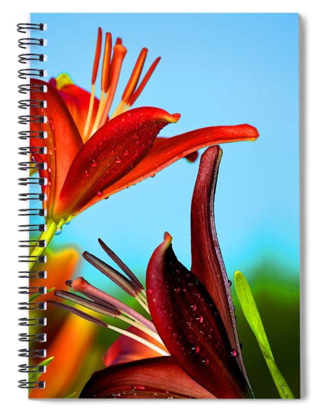 For The Love Of Lillies Spiral Notebook