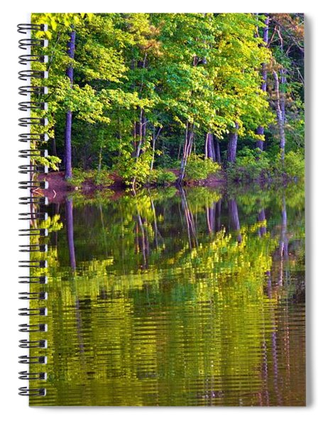 Forest In Reflection Spiral Notebook