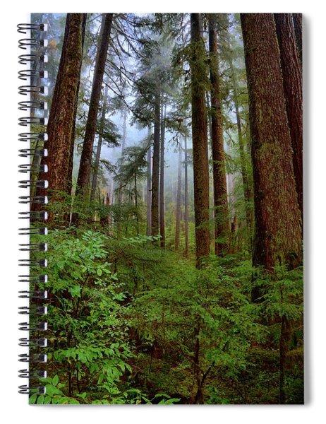 Forest Mist Spiral Notebook