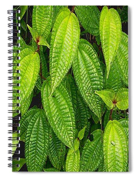 Forever Green Spiral Notebook
