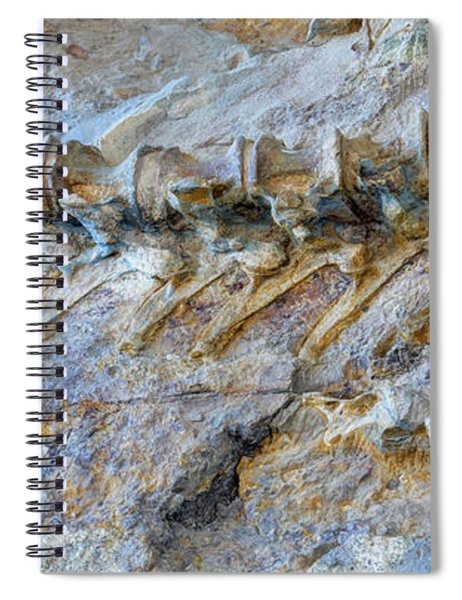 Fossilized Dinosaur Backbone - Dinosaur National National Monument Spiral Notebook