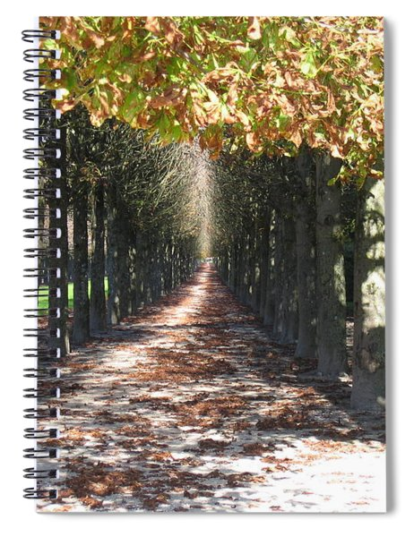 Fountainebleau - Under The Trees Spiral Notebook