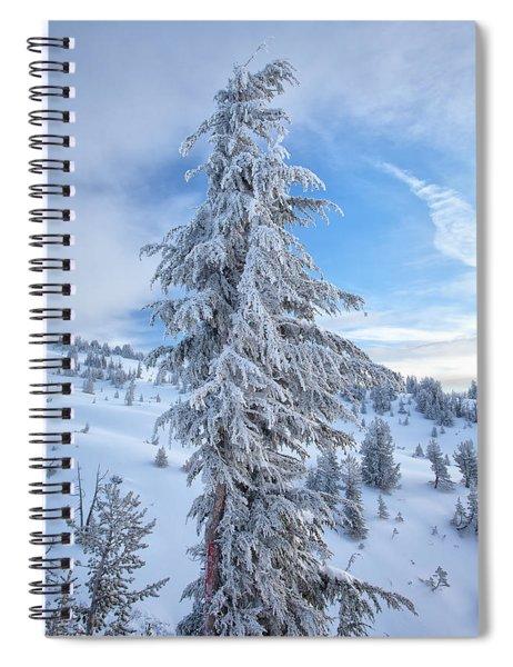 Fresh Frost Spiral Notebook