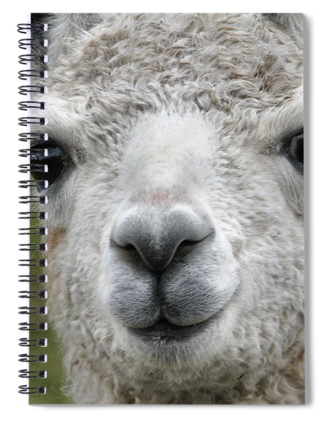 Friends From The Field Spiral Notebook