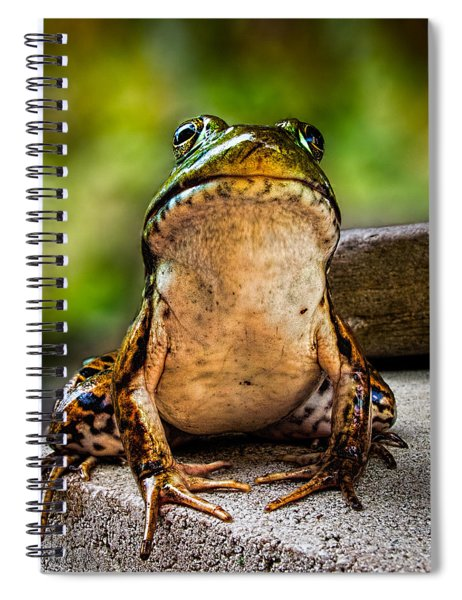 Frog Prince Or So He Thinks Spiral Notebook