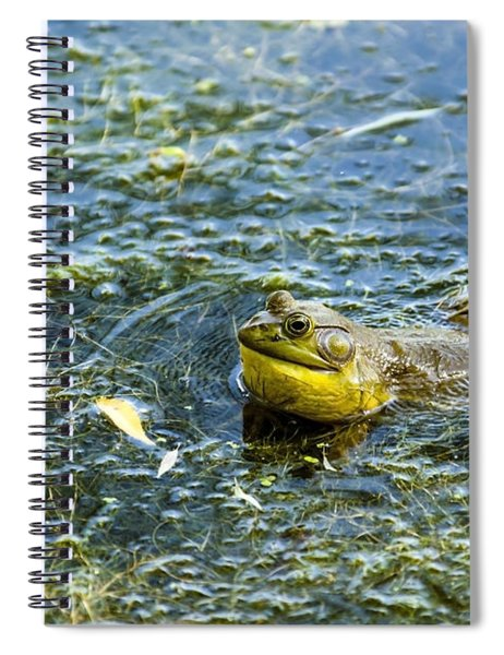 Spiral Notebook featuring the photograph Frog Song by Edward Peterson