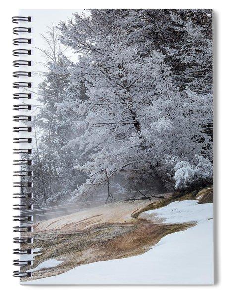 Frozen Tree Spiral Notebook