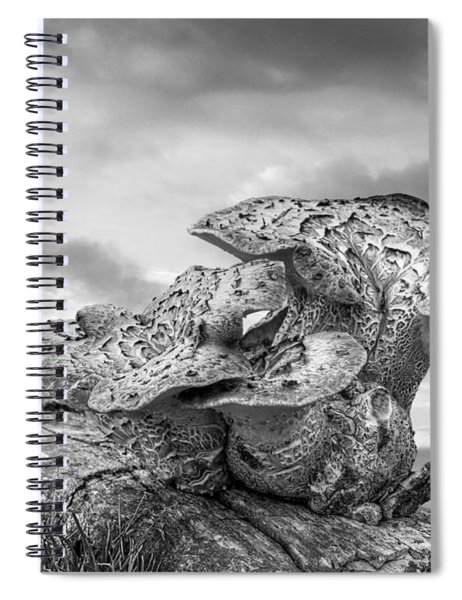 Funky Fungi Black And White Spiral Notebook