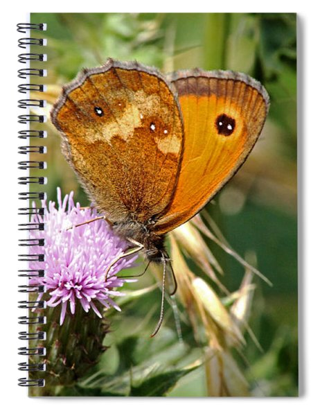 Gatekeeper Butterfly Spiral Notebook