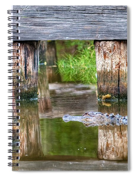 Gator At The Old Trestle Spiral Notebook