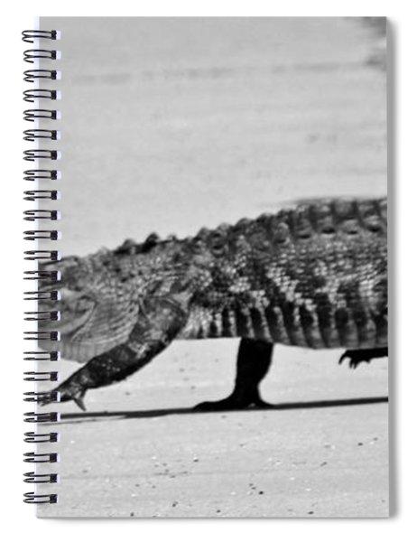 Gator Walking Spiral Notebook